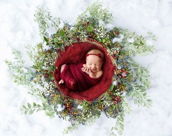 Christmas digital backdrop - Beautiful Christmas Basket with fresh plants and berries