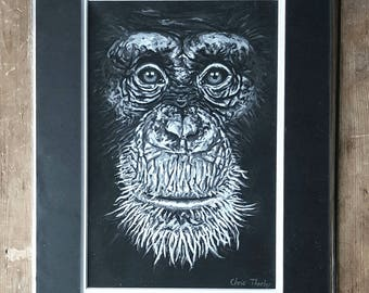 Ape - Mounted Print