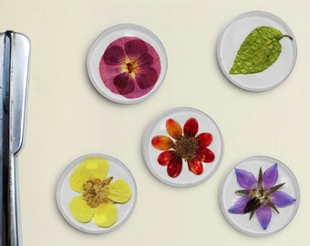 Pressed Flowers Magnets - vintage, pressed, restored, daisy, mum, leaf, rose, petal, retro, preserved, lavender, purple, yellow, green, red