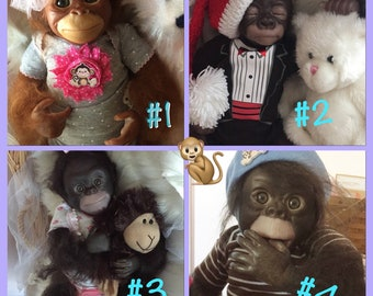 Sale! Pick your baby Monkey  Newborn Size 17 inch Baby Adopt A Monkey Sweet Chimps