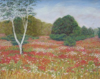 Original Pastel POPPY FIELD