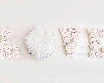 Love Digital Backdrop, Valentine's Digital Backdrop, Newborn Digital Backdrop, Valentine's Day Digital Backdrop