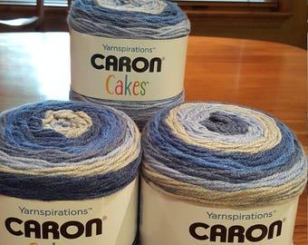 Caron Cakes Blueberry Muffin Yarn