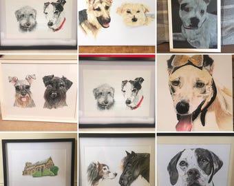 A4 or A3 Pet portraits