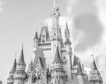 Cinderella's Castle Photo in Orlando, Florida at Disney World 12x16