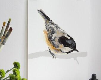 Coal Tit Bird Print, Coal Tit Print, Illustration Bird Print, Bird Art Print, Nature Print, Bird Print, Wall Print, Wildlife Print
