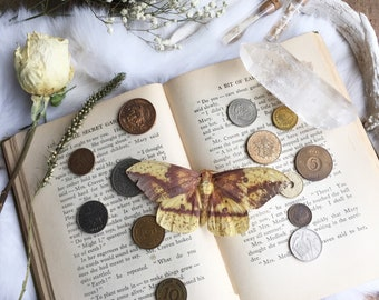 Vintage Coins, Antique Money, Divination, Coin Collection, Spell Ingredients, Spell Work, Wiccan Altar, Witchcraft