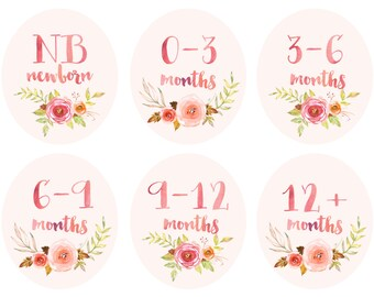 Baby Girl Infant Clothing Printable Tags Labels Dividers for Nursery Closets - Vintage Floral Watercolor - Newborn to 12+ Months