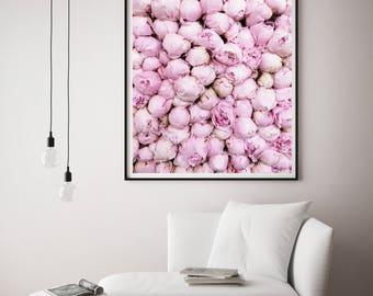 Pink peony photo, Peony Art Print, Paris Decor Bedroom, Peony Wall Art, Paris Wall decor, Cafe Art Decor, large wall art, Paris, France, Art
