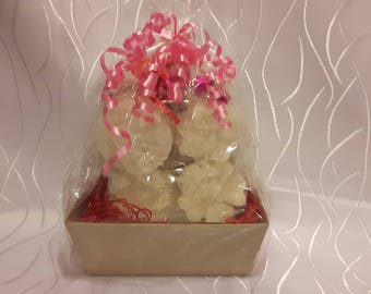 COCONUT OIL SOAPS Gift Set