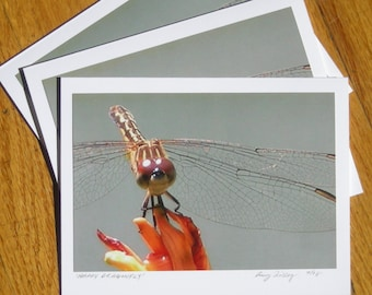 Happy Dragonfly, Phot Art Card