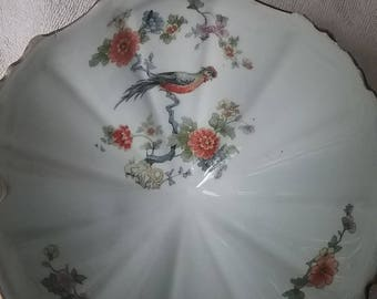 Imperfect Bowl - No Markings - Bird on Branch