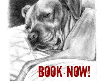 Gift For Coworker Pet Portrait Custom Gift Idea Hand Drawn Sketch of Your Pet