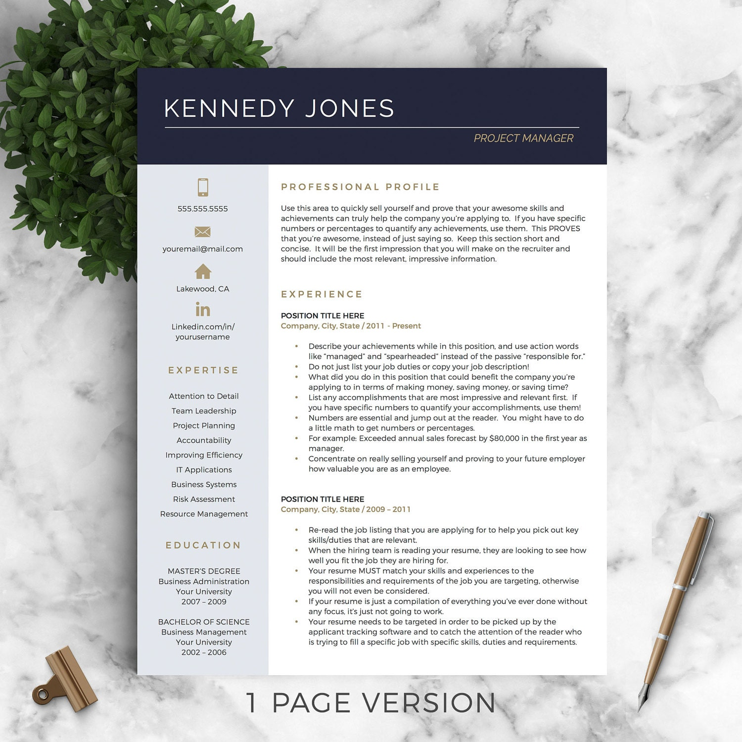 Professional CV Template for Word and Pages / Creative CV