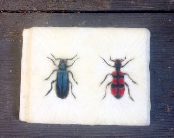 Encaustic Painting - Insect Art - Bee - Moth Art - Original Art - Photo Image Transfer -  Wood Panel - bretle - Small Painting