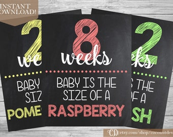 Printable Weekly Pregnancy Signs / Week 8-41 / Chalkboard Countdown / 36 Signs 8x10 / INSTANT DOWNLOAD