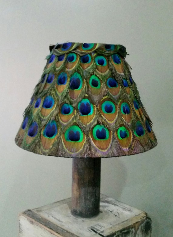 Unique real peacock feather lampshade 23cm 9 9 inches aloadofball Image collections