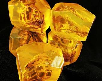 Dino Skull in Amber Soaps - Dinosaur Skull Soap - Jurassic - Paleontologist Bar