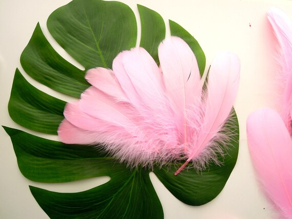 10 Pink Natural Feathers, Bubblegum pink quills, Pink craft feathers, Pink Real Bird Feathers, Pink Quills
