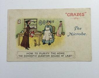 The Microbe Edwardian Postcard