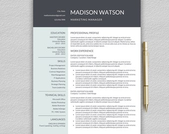 Resume Template For Word | Professional Resume Template | CV Template For  Word | One Page