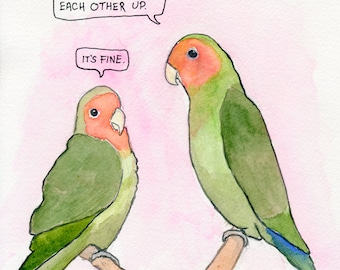 The Rosy-Faced Lovebirds