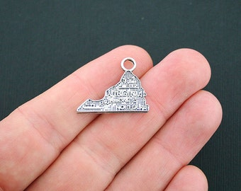 SALE 8 Virginia State Charms Antique Silver Tone - SC4759