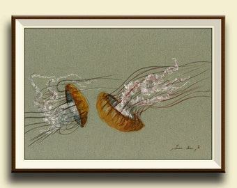 PRINT-Jellyfish animal- Jellies swimming - nautical decor- jelly fish wall art- Art Print by Juan Bosco
