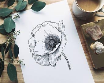 Poppy Floral Print A/4 | Floral Illustration | Botanical Art | Wall Art