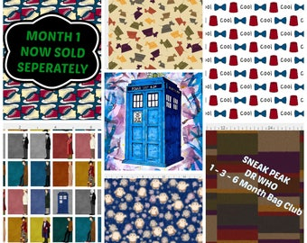 Dr Who Mystery WIP Project Bag 1, 3 or 5 Month Club, Pick Your Bag Size, Gallifrey, Tardis, Companions