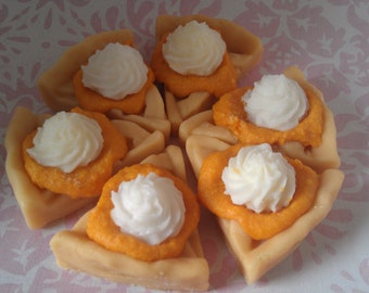 Pie Slice Tart Melts, Soy Wax Tarts, Candle Warmer Wax, Holiday Melts, Fall Autumn Scents, Dessert Candles, Gifts for Mom, Bakery Scents