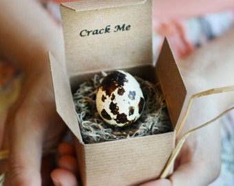 Crack Me! Bridesmaid Invitations in Quail Eggs - Maid of Honor Proposal - Unique Bridesmaid Proposal - Wedding - Bridal - Flower Girl
