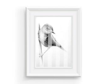 Bird on a Branch, Nature Art, Digital Print