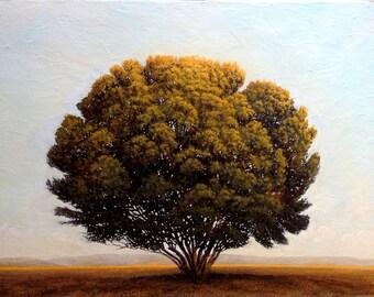 "Original Painting, Oil Painting, Fine Art Painting, Home Décor, Wall Décor, Decorative Wall Art, Canvas, Trees, Landscape, ""Summer Tree"""