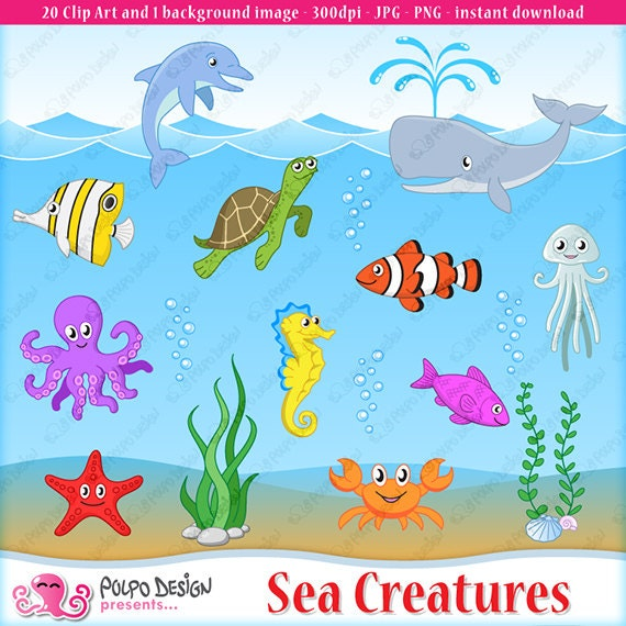 sea creatures clipart and 1 background image sea creature rh etsy com sea creatures clipart free sea creature clipart images