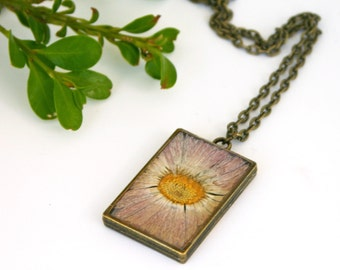 September Birth Flower Necklace, Real Flower Necklace, Aster Flower, Birthday Flower, Botanical Jewelry, Pressed Flower Jewelry