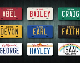 Custom USA Style License Plate Sticker (choose your wording and colour)