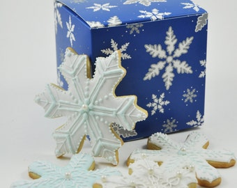 Winter Wonderland assorted Snowflakes and frozen Ice crystals Christmas Cookie Set  - cute holiday gift -  iced sugar cookies - gingerbread