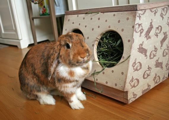 Items Similar To Double Hole Box Rabbit Hay Rack Wooden Bunny Feeder For Care Handmade On