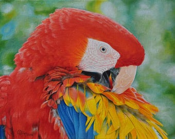 Parrot  oil painting on canvas ready to hang / animal / hipper-realism