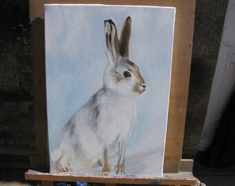 Original oil painting of an Artic Hare.
