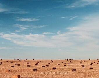 farm landscape photography / field, hay bales, sky, minimalist / blue, golden brown / wide open spaces / 8x12 fine art photography