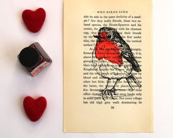 Robin Print, Bird Screen Print on Vintage Book Page