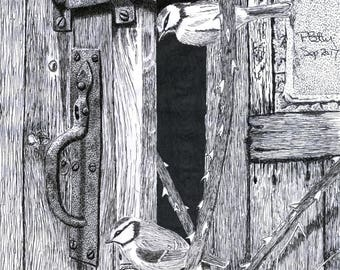 Art Print - Pen & Ink Drawing, A4 - The Old Shed