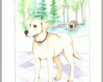 Yellow Lab by duck pond, box 16 cards with envelopes