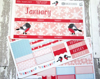 January Monthly Kit, Planner Stickers, Winter Birds, Snowflakes