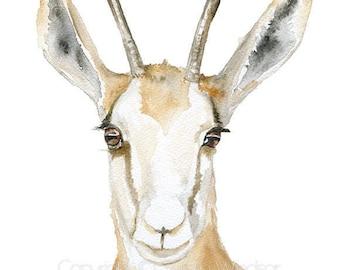 Springbok Antelope Watercolor Painting Giclee Print 5x7 Nursery Art