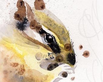 """Martinefa's Original watercolor and Ink """"Squirrel Korea"""""""