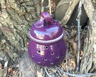 Purple Garlic Jar, Garlic Keeper, Handmade Pottery by Daisy Friesen