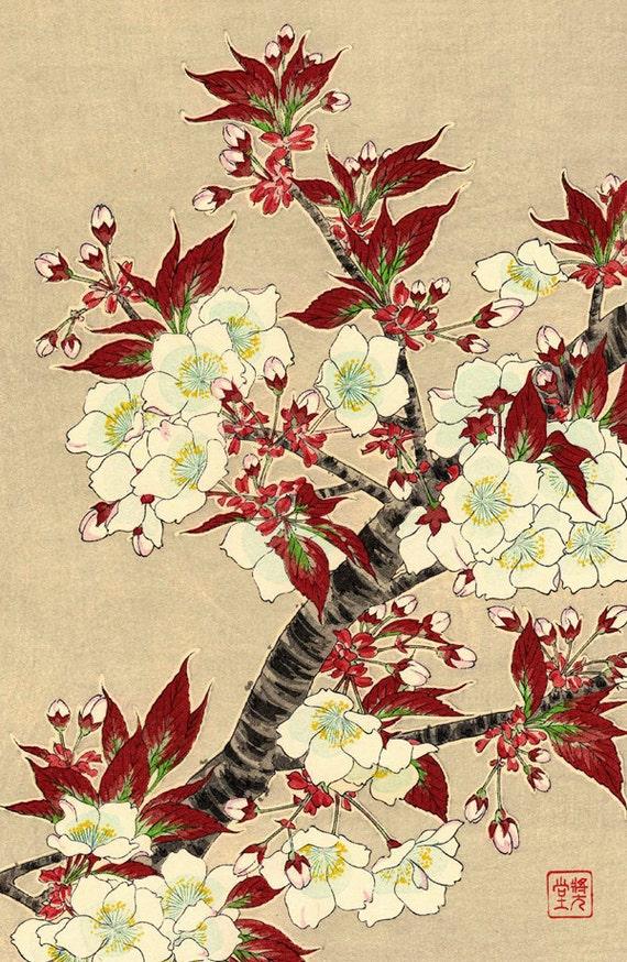 Japanese flowers art prints floral art Blooming Sakura